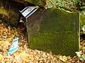 Chenstochov ------- Jewish Cemetery of Czestochowa ------- 70.JPG