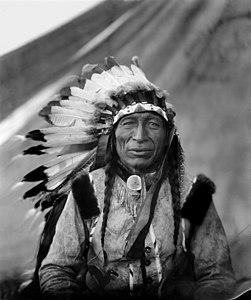 Chief Iron Tail.jpg