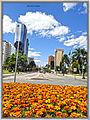 Cidade de Curitiba by Augusto Janiski JUnior - Flickr - AUGUSTO JANISKI JUNIOR (4).jpg