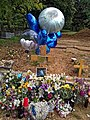 City of London Cemetery grave balloons red Solo party cup wine bottles and flowers 1.jpg