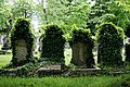 City of London Cemetery overgrown gravestone ivy 1.jpg