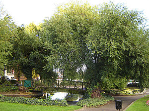 Lower Clapton - Clapton Pond – the old village green. (September 2005)