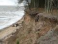Cliff Erosion, East Mersea - geograph.org.uk - 1574988.jpg