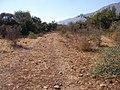 Climbing Har Shamai to Amirim - panoramio (3).jpg