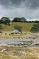 Coastal Farm New Zealand-1630.jpg