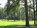 Cold Harbor Battlefield 2009.jpg