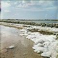 Collectie Nationaal Museum van Wereldculturen TM-20029688 Zoutpannen bij Rode Pan, Pekelmeer Bonaire Boy Lawson (Fotograaf).jpg