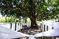 Comemorações do Dia da Consciência Negra na Serra da Barriga (22829466727).jpg