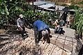 Construcción de escalinata de 16 metros en la Ciudadela Eloy Alfaro (9215124807).jpg
