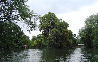 Formosa Island island in the River Thames