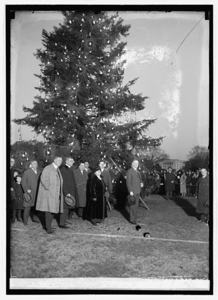 File:Coolidge community christmas tree 25154u.tif