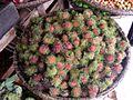 Corbeille de fruits.jpg