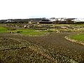 Corbridge Roman Ruins2.jpg