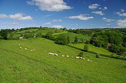 Cotswold Way - panoramio