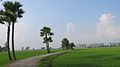 Country view of Bnagladesh.jpg