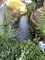 Cours Eau Fossé Enceinte Pont Veyle 8.jpg