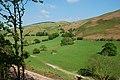 Cwm of the Nant y Ffin - geograph.org.uk - 800424.jpg