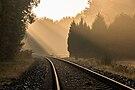 Dülmen, Börnste, Eisenbahnlinie Dortmund-Enschede -- 2015 -- 9918.jpg