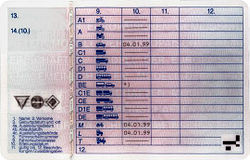 German version reverse9. Licence categories10. Issue date of the category11. Expiry date of the category12. Restrictions (number coded)