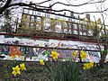 Daffodils, graffiti and residential building seen from the Ridge, Woodhouse, Leeds (2009) - panoramio.jpg