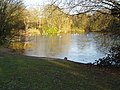 Danbury Lakes - Middle Lake - geograph.org.uk - 332407.jpg