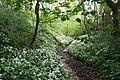 Dane tributary - geograph.org.uk - 1289686.jpg