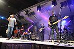 Darius Rucker performs for service members in Spain 141116-N-UI568-098.jpg