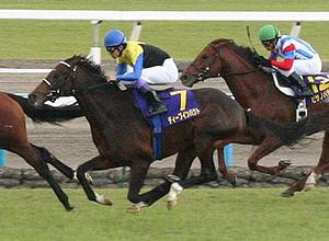 Sunday Silence - Deep Impact winning Kikuka Sho 2005 on October 23.