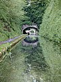 Deep cutting at Cowley Tunnel near Gnosall, Staffordshire - geograph.org.uk - 1387742.jpg
