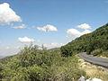 Del Desierto al Bosque Nublado.JPG
