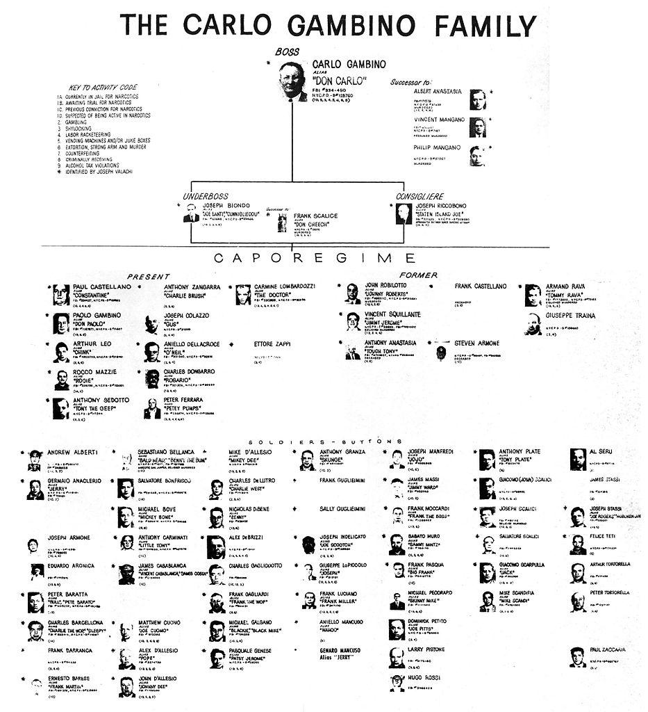 Tax Chart: Descendants of Gambino Crime Family 2014-07-15 20-23.jpg ,Chart