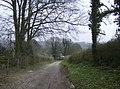 Descent to Preston Candover - geograph.org.uk - 377254.jpg