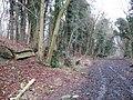 Dismantled bridge, near Stanton - geograph.org.uk - 1097758.jpg