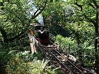 Dolgoch Falls viaduct - geograph.org.uk - 214250.jpg