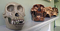 Down House, Downe, Kent, England -skulls-24April2011.jpg