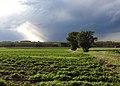 Dreigend onweer boven Rullingen - panoramio.jpg