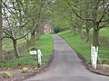 Driveway to Chyknell - geograph.org.uk - 776792.jpg