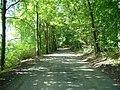 Droga wzdłuż jeziora - panoramio.jpg