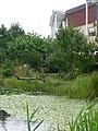 E.V.A. LanxmeerWetland4 2009.jpg
