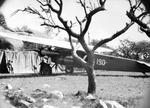 ETH-BIB-Fokker F.VII im Camp Serengeti-Kilimanjaroflug 1929-30-LBS MH02-07-0326.tif
