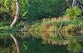 East Tennessee Crossing - Rankin Bottoms - NARA - 7718109.jpg