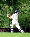 Eastons Cricket Club Sunday match, Little Easton, Essex, England 12.jpg