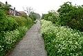 Edenthorpe Lanes - geograph.org.uk - 173159.jpg