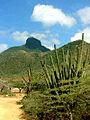 El Cerro.jpg