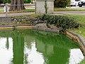Elm Pond Culvert.jpg
