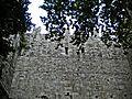 Emperor's Castle-Looking to the sky.jpg