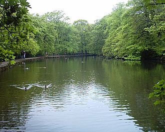 Endcliffe Park - The second, and larger, pond