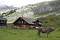 Engstlenalp, Switzerland - panoramio (12).jpg
