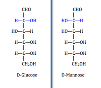 projection of D-glucose and D-mannose
