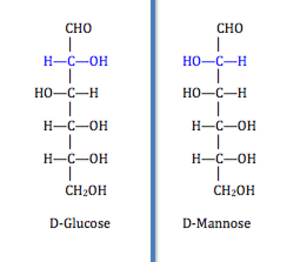 Isomerase - Epimers: D-glucose and D-mannose